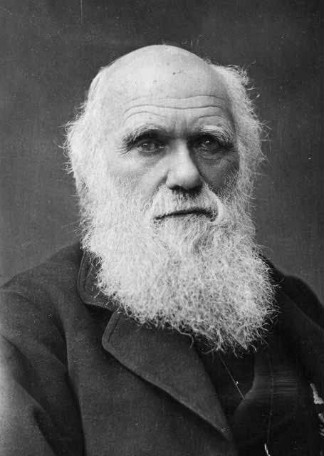 a biography of charles darwin born in shrewsbury england Essay on biography of charles darwin - feb12, 1809-april 19,1882 charles darwin was born in the city of shrewsbbury, england and was raised as a fifth child by a wealthy family (his father was a physician and son of erasmus darwin, a poet, philosopher and naturalist.